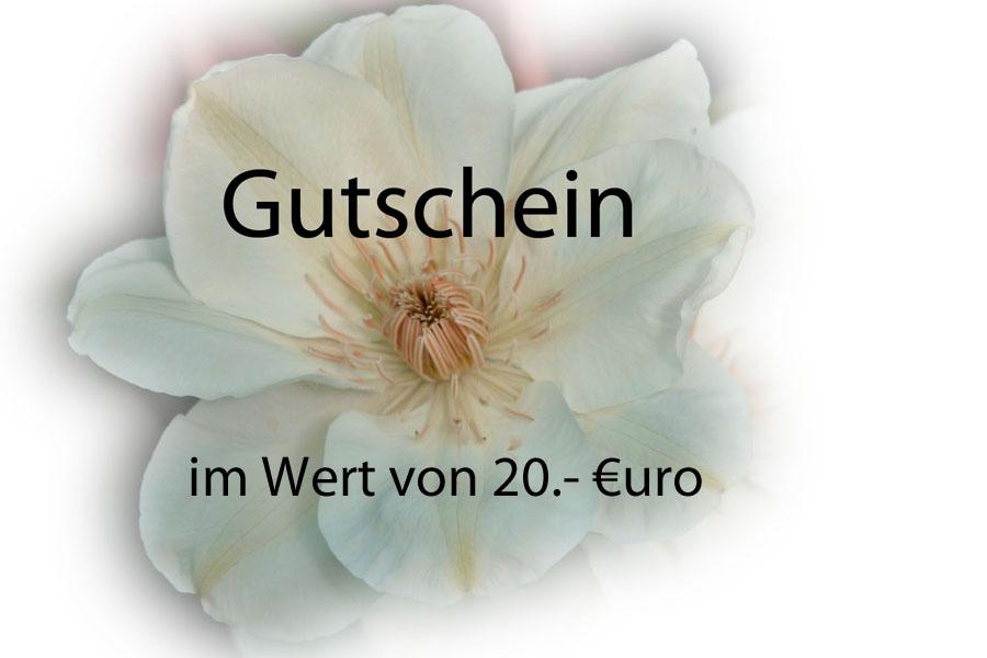 Gutschein:  20 Euro
