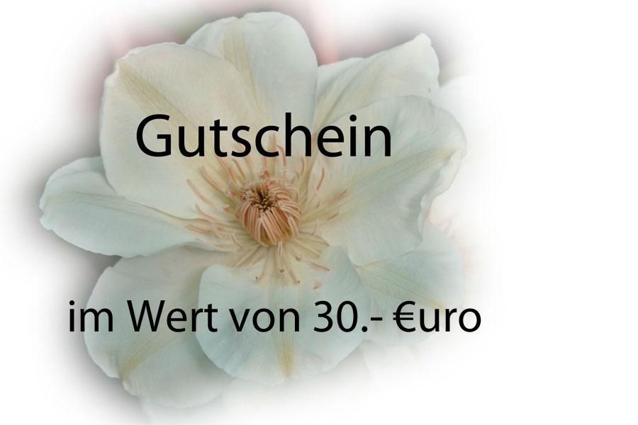Gutschein: 30 Euro
