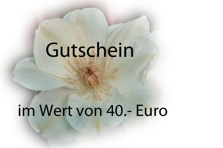 Gutschein: 40 Euro